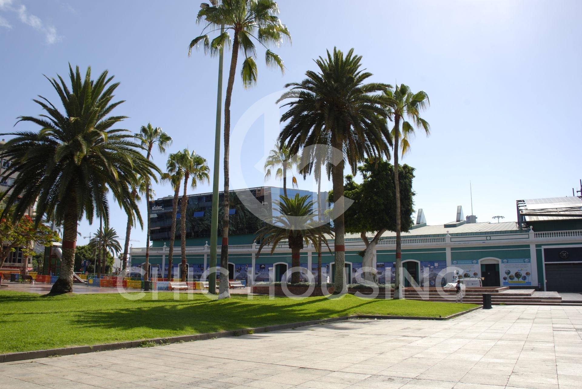 alquiler-vivienda-vacacional-las-palmas-de-gran-canaria-las-canteras-parque-santa-catalina02