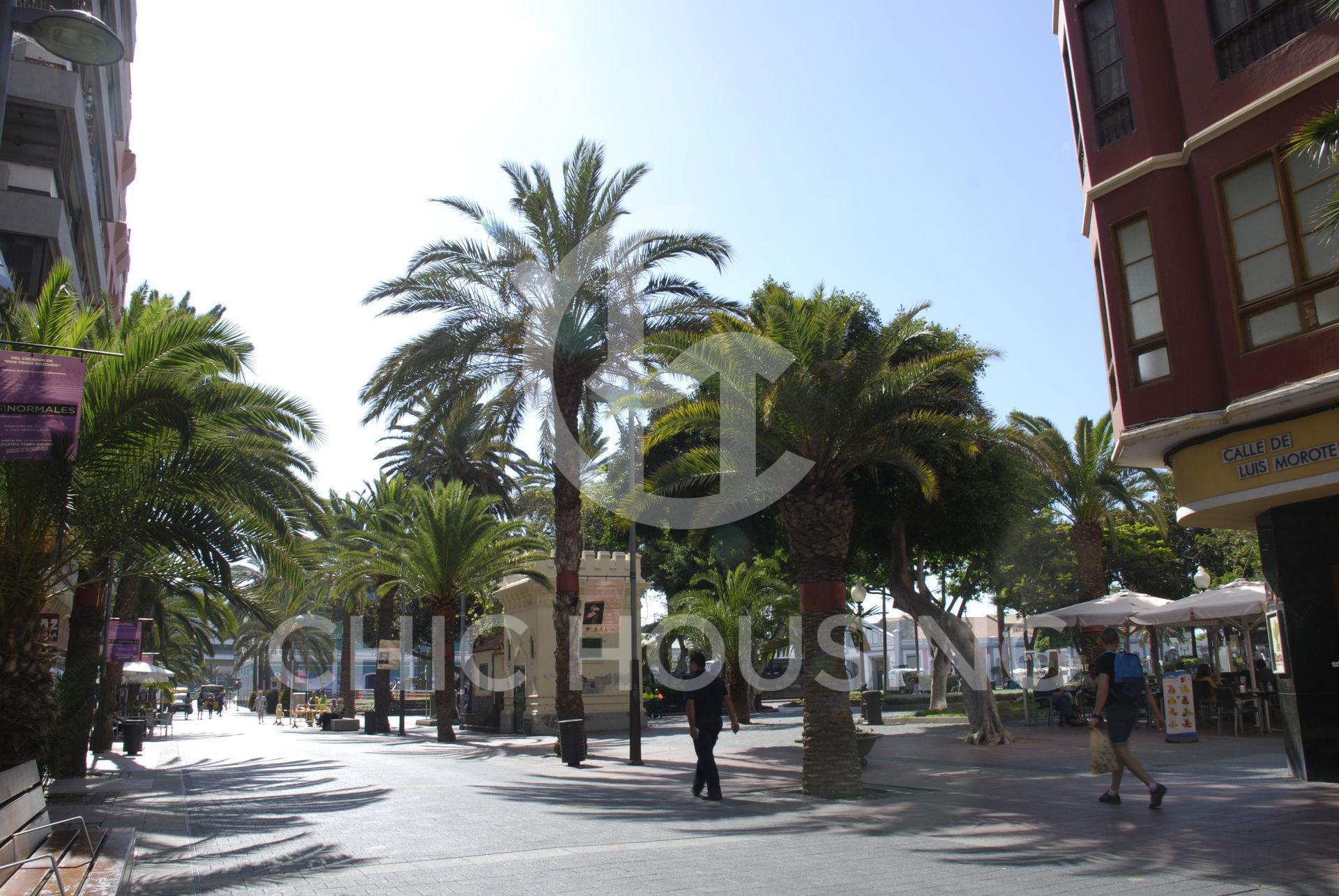 alquiler-vivienda-vacacional-las-palmas-de-gran-canaria-las-canteras-parque-santa-catalina03